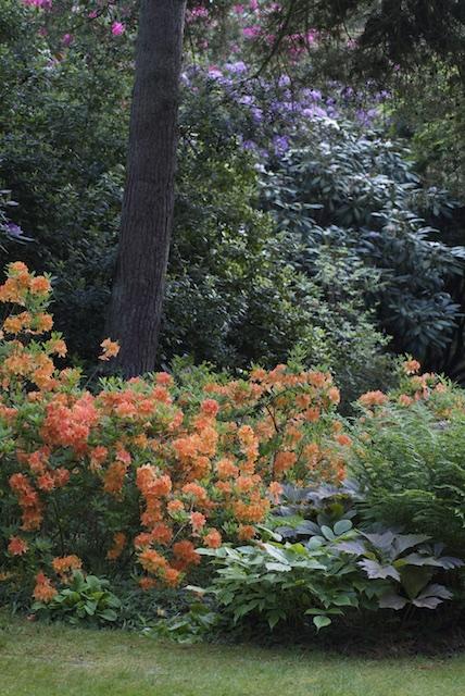 Visite thématique] Concevoir un jardin beau toute l\'année ...