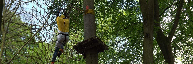 Woody Park - Fécamp